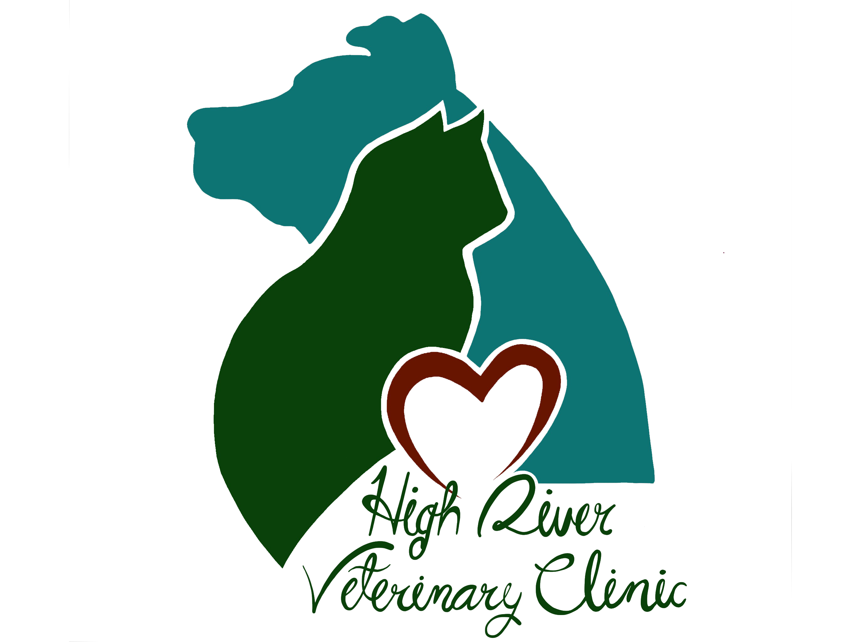 High River Veterinary Clinic